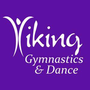 Viking Gymnastics