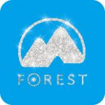Forest Dream Studio