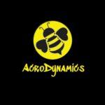 AcroDynamics